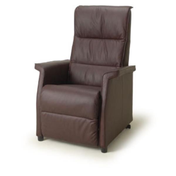De Toekomst Wales sta-op fauteuil