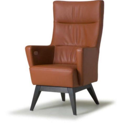De Toekomst Derosa sta-op fauteuil