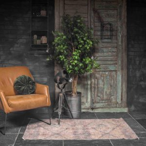 DS Meubel fauteuil Roos